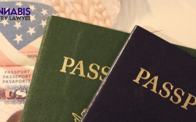 Immigration and The MORE Act