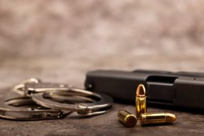 Will County Gun Possession Lawyer